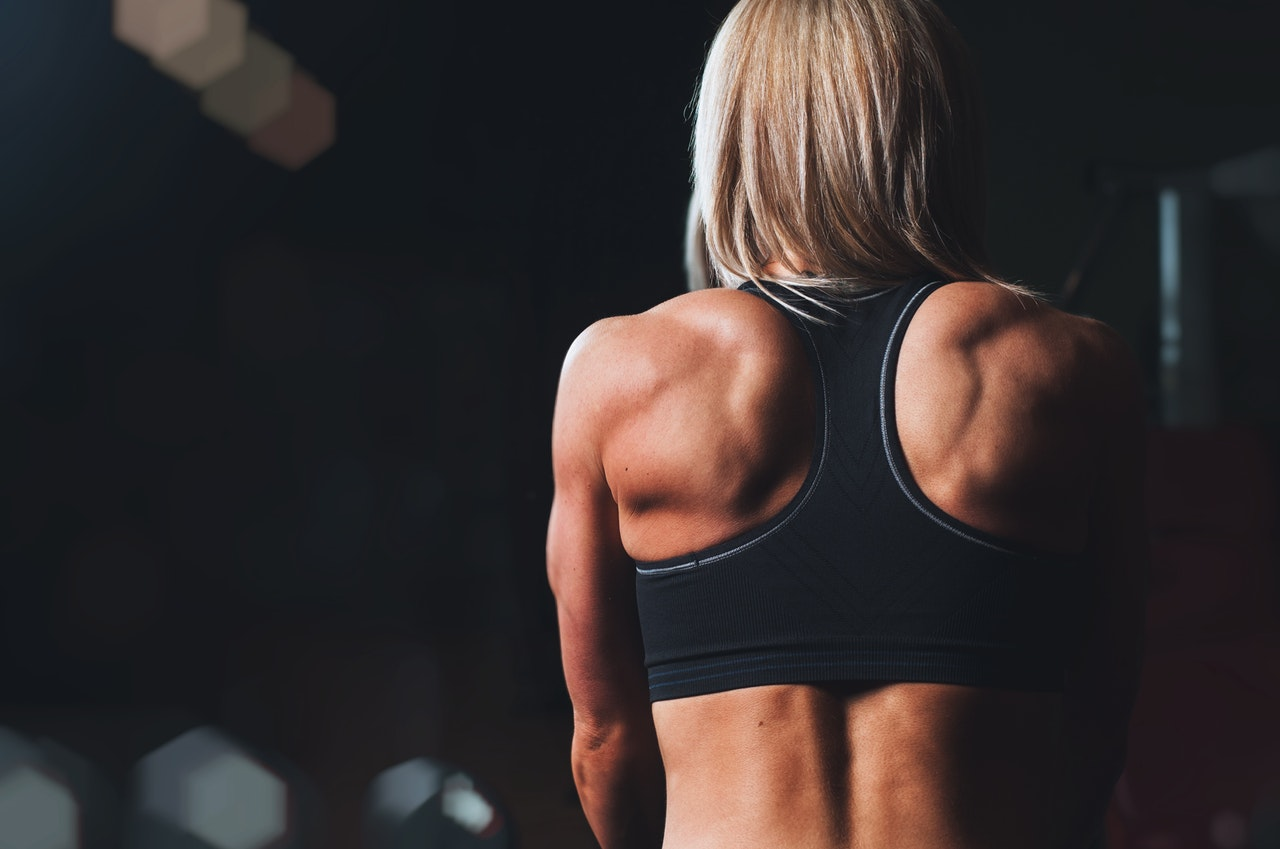 bodyweight back workout